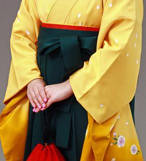 茶系の着物